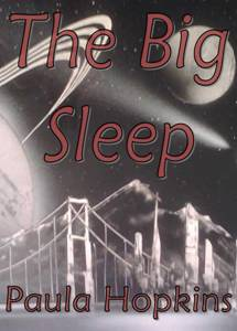Big Sleep Book Cover